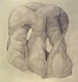 Todd Leninger- Biomorphs-Matthew.jpg