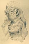 Todd Leninger- Biomorphs-Jeff Burke 001.jpg